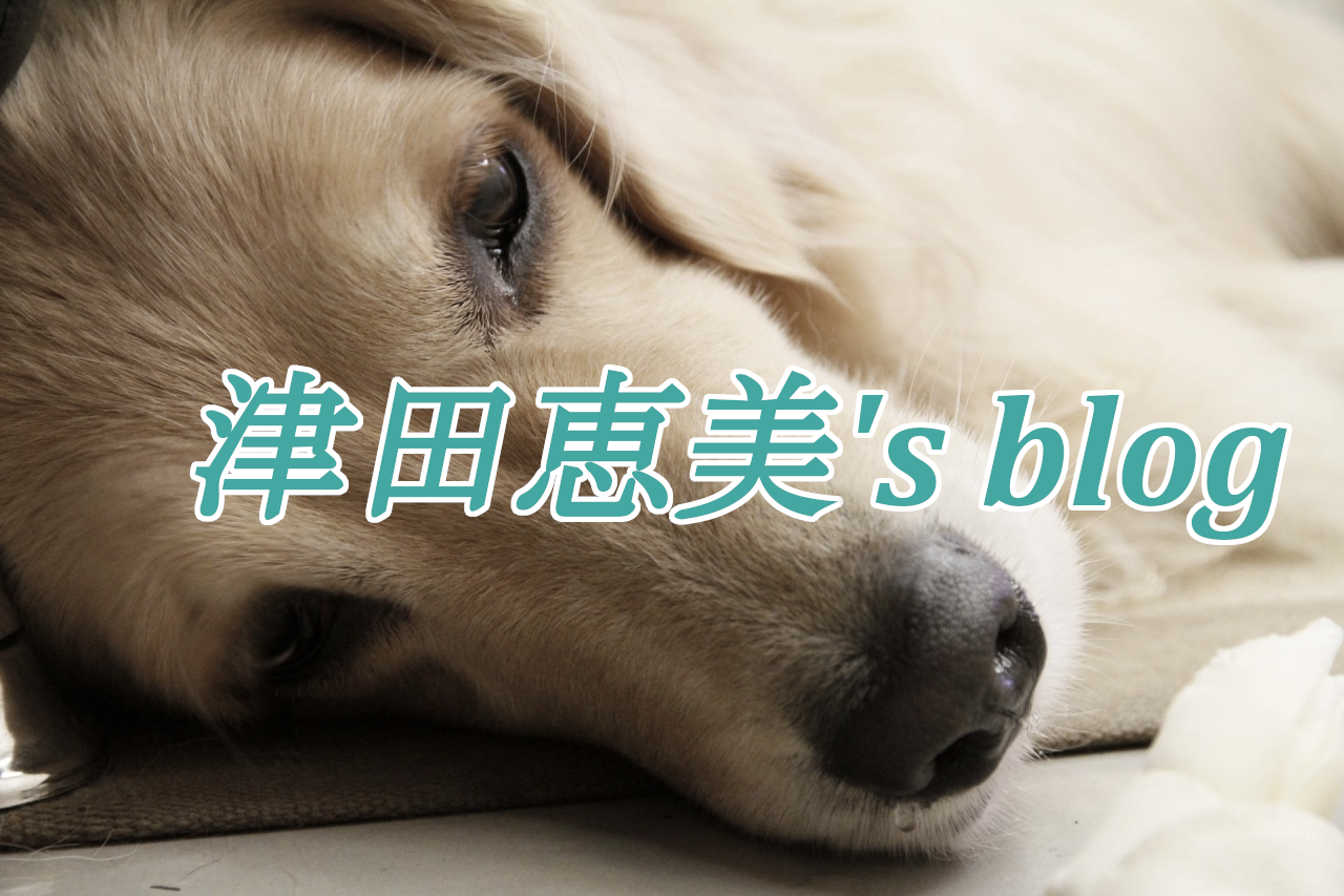 津田恵美blog